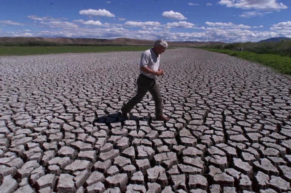 Phil Norton, manager of the Klamath Basin National Wildlife Refuges in Tulelake, Calif., on July 17, 2001, walks across the mud flats that were created when water from the Klamath River was cut off.